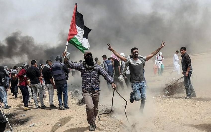 p15 gaza protest